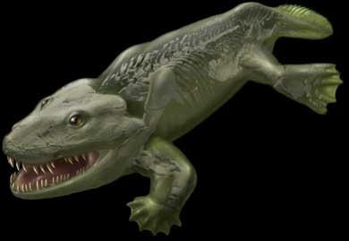 El primer vertebrado terrestre no andaba,saltaba.