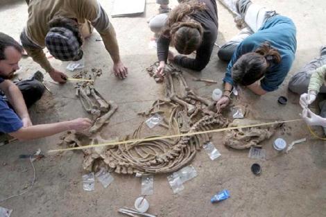 El equipo de excavadores, junto al esqueleto. | IPHES